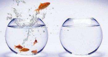 cambio-strategia-controllo-di-gestione-aziendale