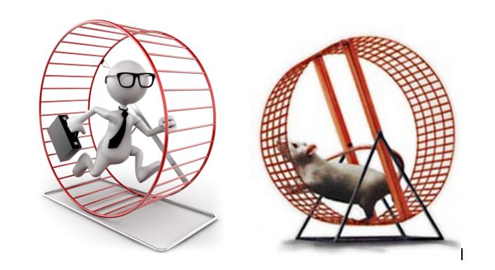 corsa-del-topo-anche-per-aziende-controllo-gestione-aziendale-spending-review