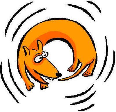-rincorsa-ai-fattuati-gestione aziendale-cane che si morde la coda