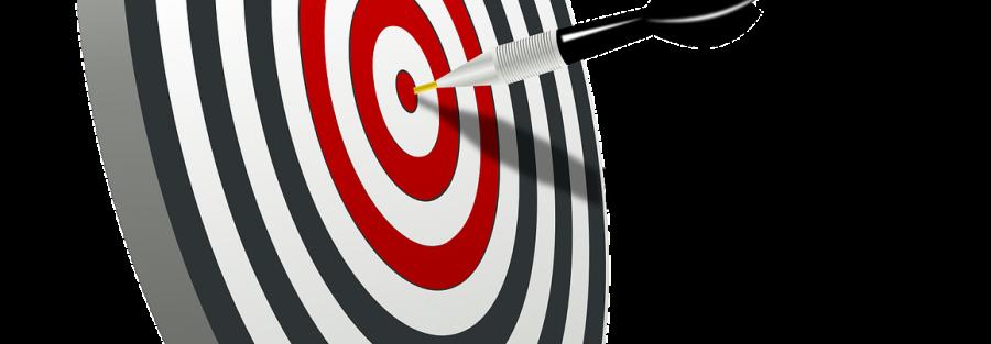 budget-controllo di gestione aziendale